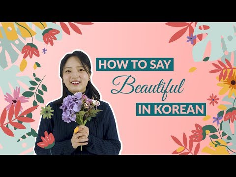 How to Say BEAUTIFUL in Korean | 90 Day Korean
