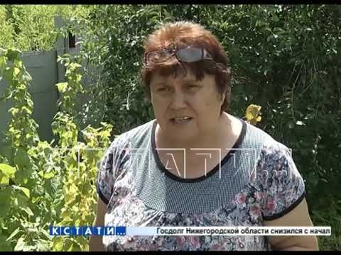 Черное озеро химических отходов отравляет жизнь города Павлово