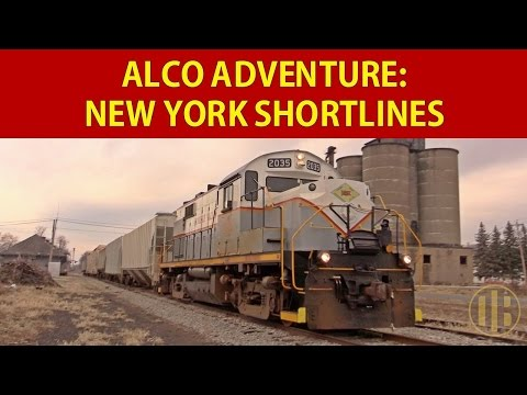 ALCOs in New York (Part 1)