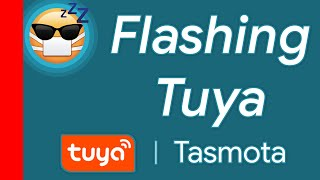 Sonoff Tasmota Prod Controlling Smart Homes — Totoku