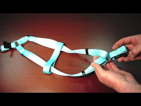 Step-in-Harness - Twisted Harness Correction