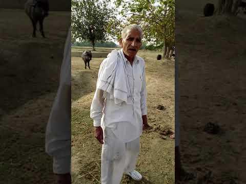 Ramkumar Dhundwa Ragni