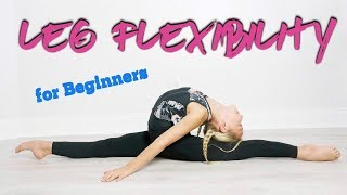 How to Increase Leg Flexibility for Beginners