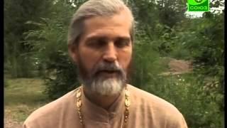 10 лет православному лагерю
