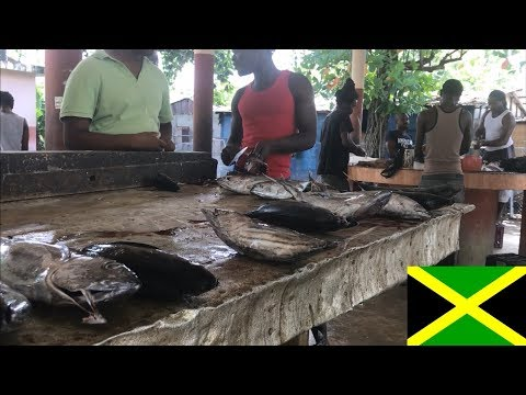 Jamaica Negril - Things To Do, Tips And Impressions - Part 5