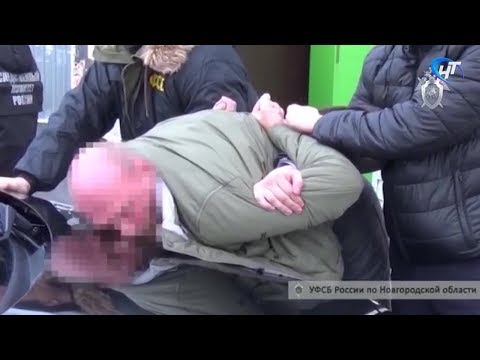 В Окуловке задержан пермяк, пытавшийся откупить от административного преследования гастарбайтеров