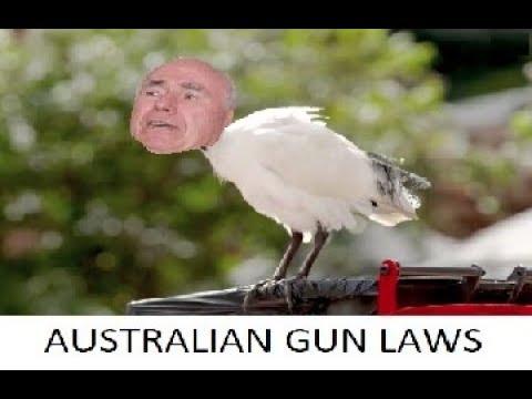Australian Gun Laws Explained