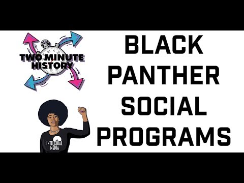 Two Minute History: Black Panther Party Social Programs