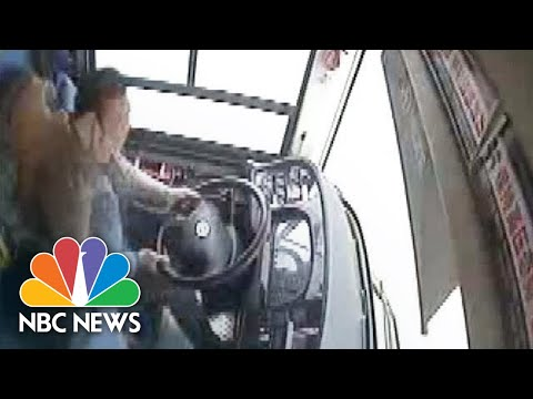 Video shows Woman Fight With Bus Driver, Causing Deadly Cras