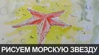 Урок рисуем Морскую звезду на морском дне