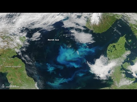 Turquoise swirls: in the Black Sea caused by phytoplankton.