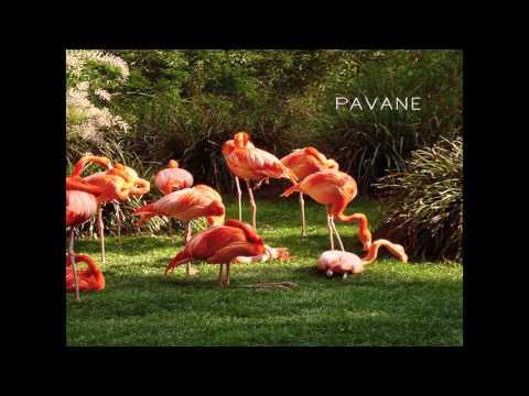 PAVANE - La Danse de Daphnis