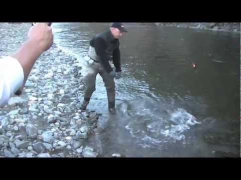 Trinity River Fall Steelhead with Don Newman