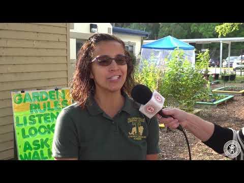 Planting Seeds of Curiosity: Tildenville Elementary School Garden