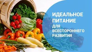 Идеальное питание для всестороннего развития