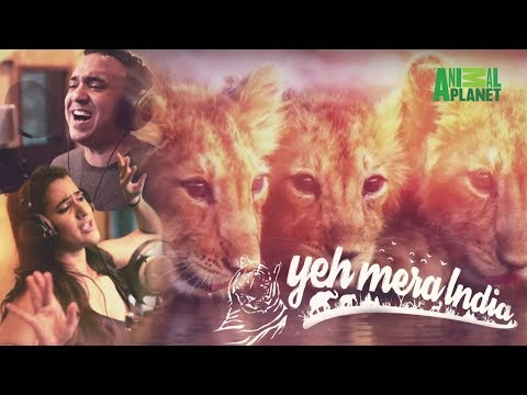 Yeh Mera India Anthem | Animal Planet India - Ram Sampat, Sona Mohapatra
