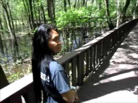 Mingo Natural Wildlife Refuge Area and Duck Creek Missouri