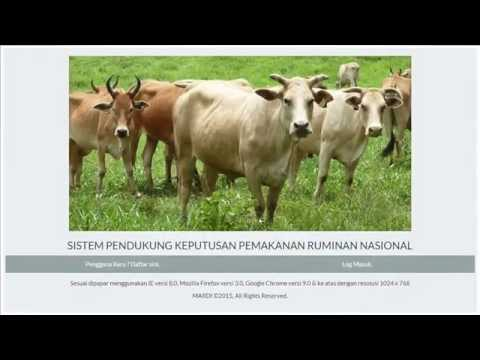 Web-based Ruminant Feeding Decision Support System