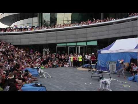 Circolombia Thames Festival 2012