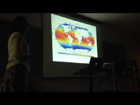 GASS Seminar Series: Petra Dekins