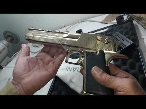 357. Desert Eagle Magnum Review
