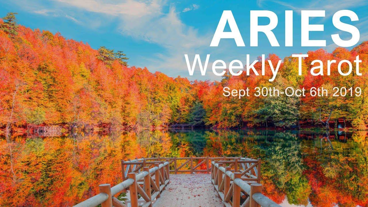 weekly tarot october 25 2019