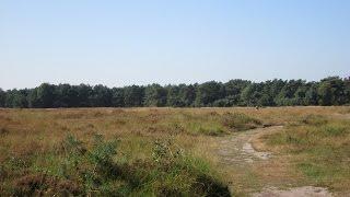 Park en landgoed Ginkelduin Leersum door Tine de Jong