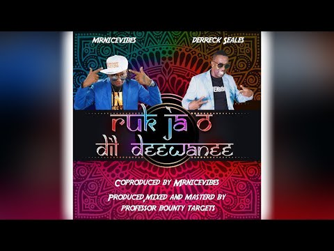 Mr Nice Vibes & Dr Seales - Ruk Ja O Dil Dewanee (2019 Bollywood Refix)