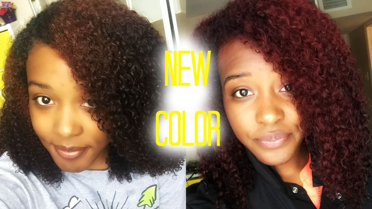 Natural Hair New Color Update Bonus Theory Ammonia Free