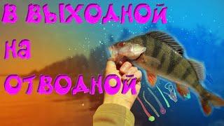 Рыбалка на окуня летом Отводной поводок