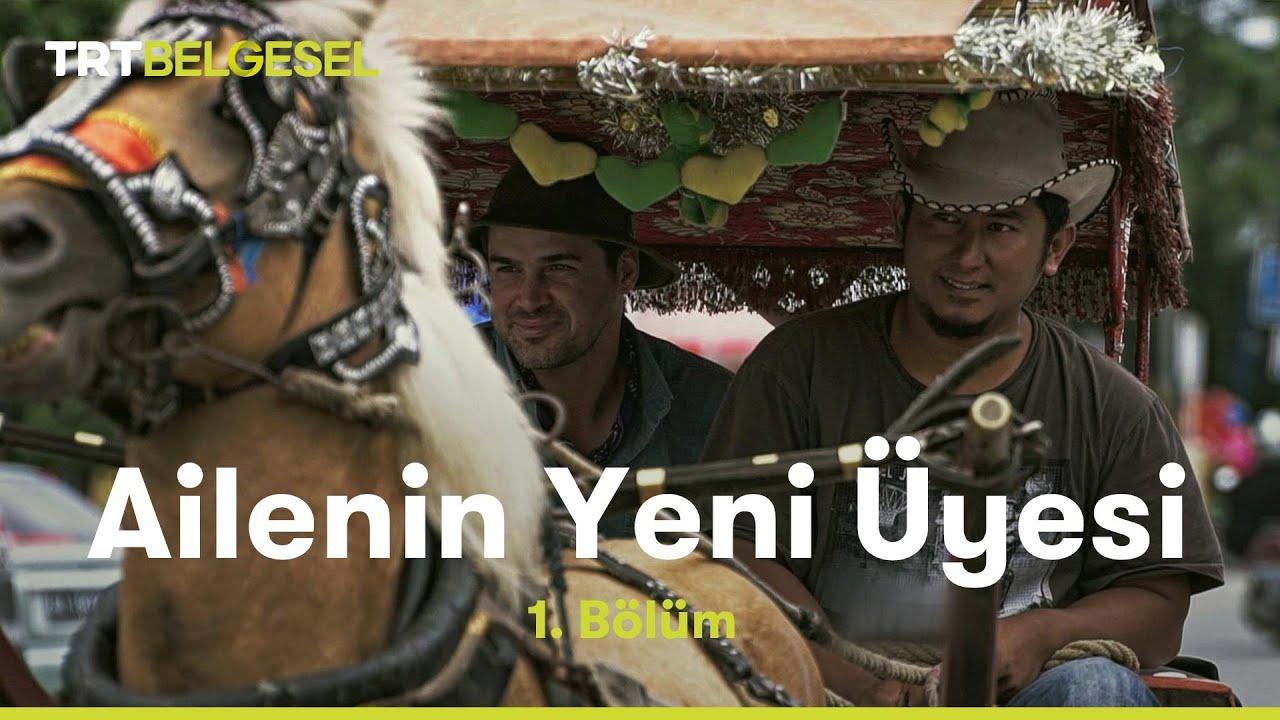 Ailenin Yeni Üyesi: Türkiye | Isparta | TRT Belgesel
