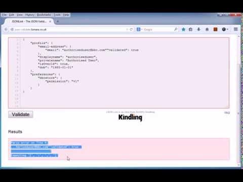 validate your JSON online: http://json-validate lonare co uk