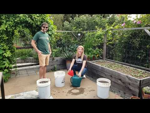 How to Make Actively Aerated Compost Tea