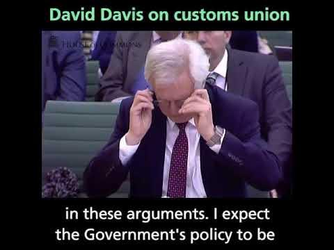 David Davis giving evidence on the Customs Union