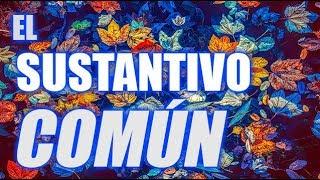 EL SUSTANTIVO COMÚN (PROFUNDIZACIÓN) (BIEN EXPLICADO CON EJEMPLOS) - WILSON TE ENSEÑA