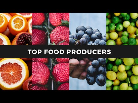 Top Food Producers of the World