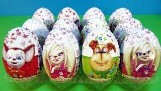 Собираем коллекцию 3 Шоколадные сюрпризы Барбоскины. Игрушки. Мультик. Unboxing kinder surprise