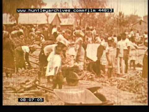 Nigeria, 1960's - Film 44813