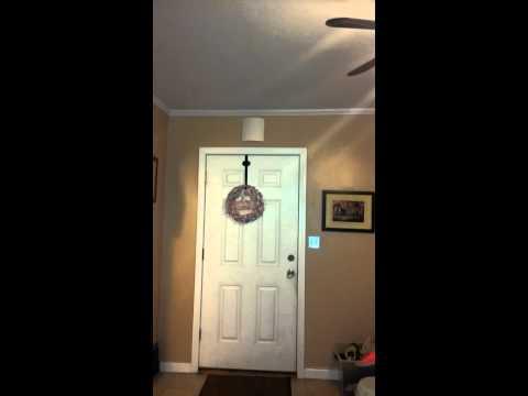 Cool doorbell