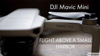 DJI Mavic Mini Haven Middelharnis