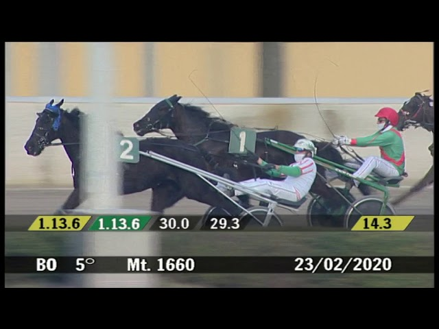 2020 02 23 | Corsa 5 | Metri 1660 | Premio Arlecchino