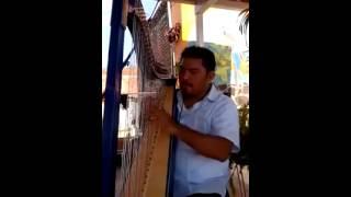 """Interpretación de """"Corazón de niño"""" en Arpa instrumental para dejar la piel chinita."""