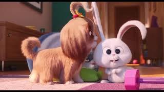 Фото Мультфильм 2019   Тайная жизнь домашних животных 2  Трейлер ENG