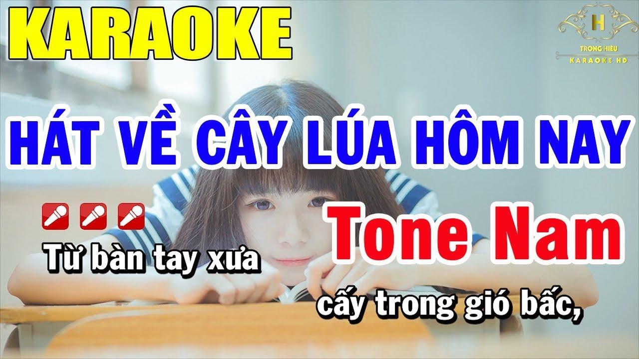 Karaoke Hát Về Cây Lúa hôm Nay Tone Nam Nhạc Sống | Trọng Hiếu