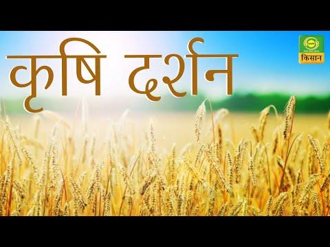 कृषि दर्शन : छप्पर वाली बांस भंडारण संरचना | Krishi Darshan | July 15, 2020