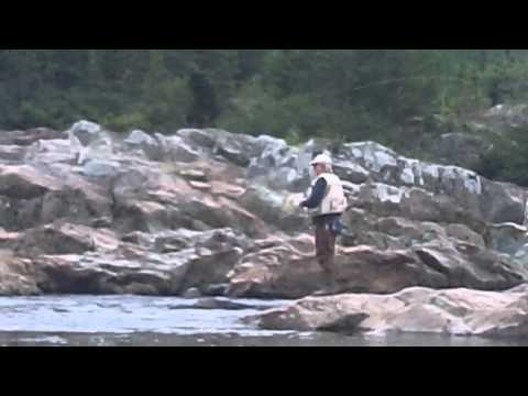 Salmon Fishing on Pipers Hole River near Swift Current, Newfoundland - July 2012