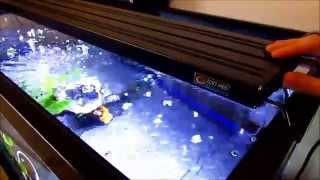 aquasun led aquarium extendable lighting part 2