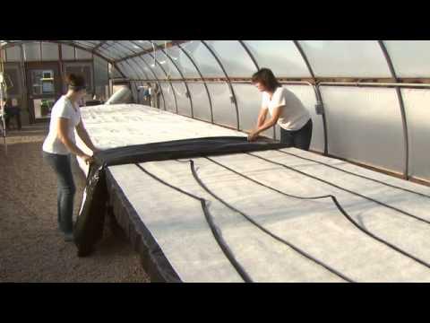 Nebraska Winter Strawberries: Capillary Mat Construction