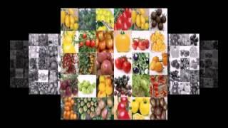 семена овощей оптом украина(http://goo.gl/6XT3nS Самый большой выбор семян! Заходите, в крупнейший интернет-магазин!, 2015-02-10T20:19:33.000Z)
