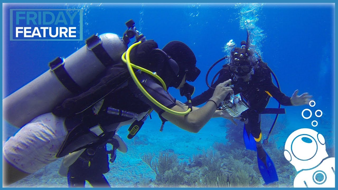 Simply Scuba-Why divemaster?